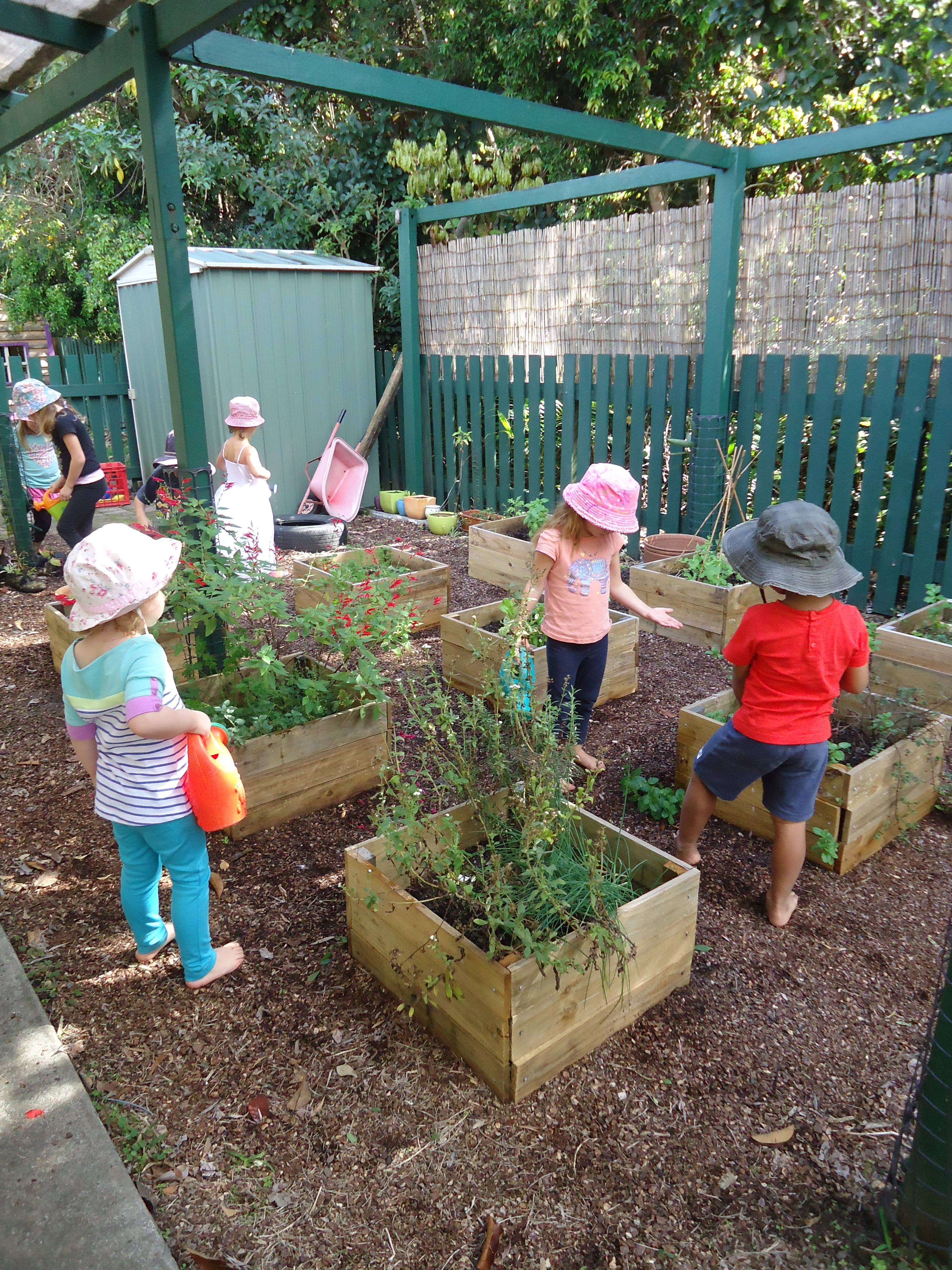 Natural Montessori Steiner Child Care Gold Coast Little Apple Tree Child Family Day Care